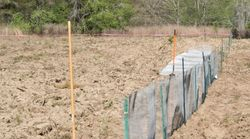 Hardware cloth fence