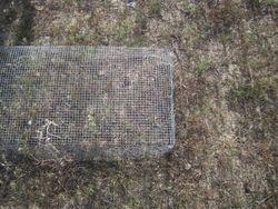 Caged plots