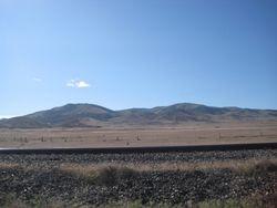 Rose Creek field site