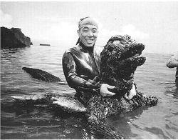 """Godzilla vs. the Sea Monster,"" 1966."