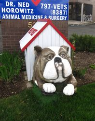 """Pet Vet Bull Dog"""