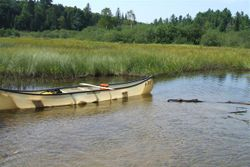 """My Rental Canoe """"Patches"""""""