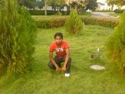at the seusl garden