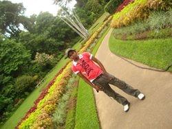 at the pera garden