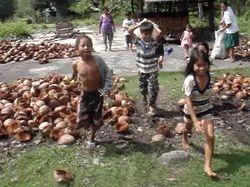 children along the road