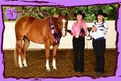 2012 Amateur Showmanship Champion