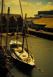 AUM GAIA on the docks_2