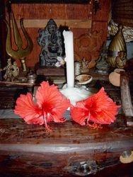AUM GAIA  Ganesh Temple