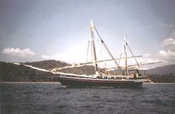 AUM GAIA  Panoliem, Goa / India  1987