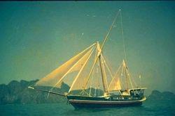 AUM GAIA  easy sailing