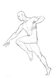Anatomy Study - Male Figure