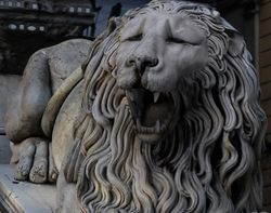 Lion - Animated 3D Model