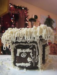 Our Organic Gingerbread House