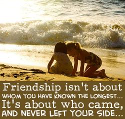 More True Friends