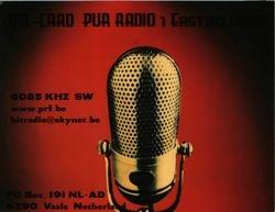 Pur Radio 1
