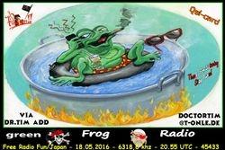 Green Frog Radio