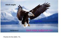 Radio Black Eagle