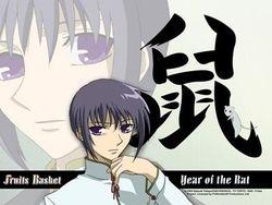 Yuki The Rat