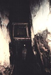 The 350 foot level, Carissa Mine, South Pass