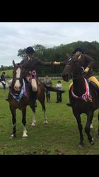 Champion and Reserve 2015