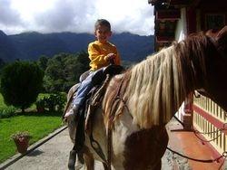 Nene en caballo