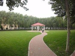 Park of Shenyang Medical College, China.