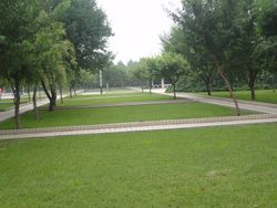 Park view of Shenyang Medical College, China.