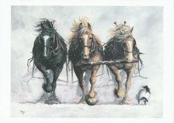 Three's Comapny