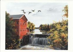 Autumn on Dell's Pond