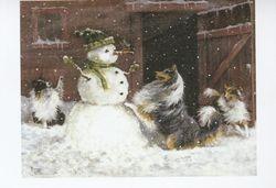 Robin's Winter Surprise