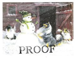 Robin's Winter Surprise!