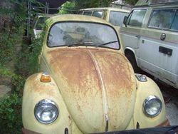 1973 VW Bug