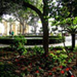 Barraca Gardens