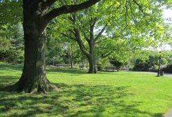 Billings Lawn