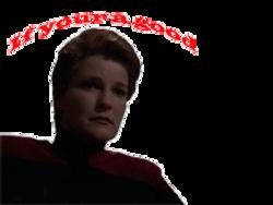 Evil Janeway