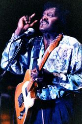the Late, Great Albert Collins