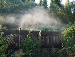 Steamy fence