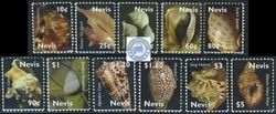 Lot No.120_70 Nevis