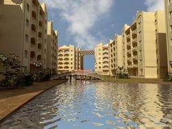 Alsafa City