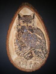 The Horned Owl