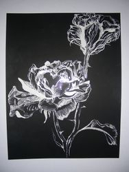 The Botanicals- Rose (Love)