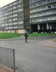 DIVIS 1991