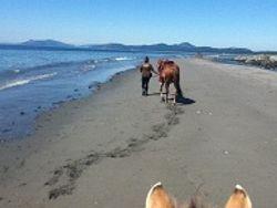 Summer Beach Ride at Rocky Point