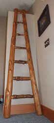 Custom Ladder