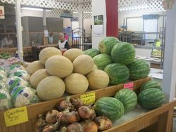 The Best of local Produce in Season