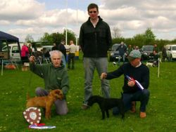 Best Coloured Terrier (left) and Reserve.