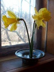 Smal flower holder