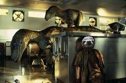 Sloth Park