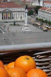 Lizbonske pomarance