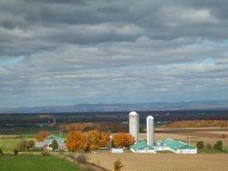 automne 2008